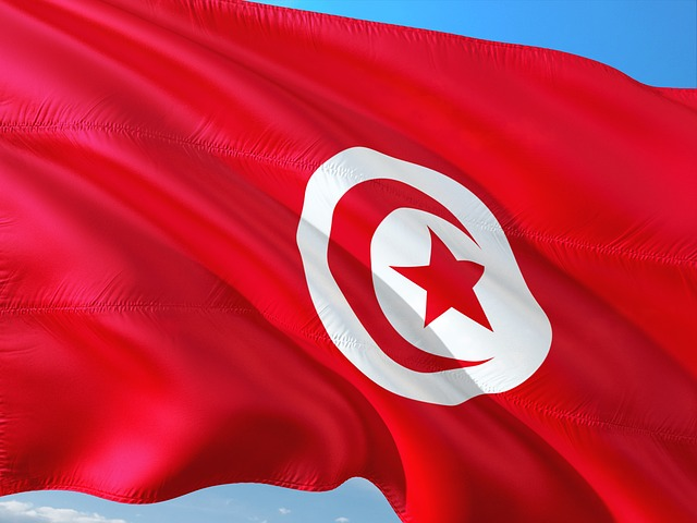 Tunisia Flag 2
